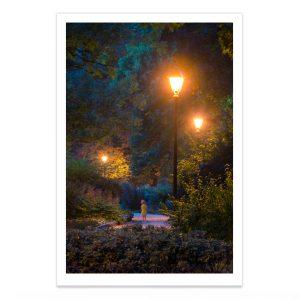 fotografija; printas; foto paveikslas; pirkti; fotografijos printas; arturas jendovickis; jendovickis; peizazas; landscape; bernardinu sodai; bernardinai; sereikiskiu parkas; parkas; medziai parke;