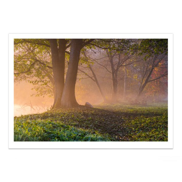 fotografija; printas; foto paveikslas; pirkti; fotografijos printas; arturas jendovickis; jendovickis; peizazas; landscape; ruduo; sauletekis; rukas;