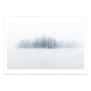 fotografija; printas; foto paveikslas; pirkti; fotografijos printas; arturas jendovickis; jendovickis; peizazas; landscape; ziema; migla; sniegas; medziai;