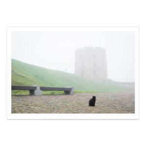 fotografija; printas; foto paveikslas; pirkti; fotografijos printas; arturas jendovickis; jendovickis; peizazas; landscape; gedimino pilis; gedimino bokstas; gediminas tower; rukas; kate; juoda kate; black cat; rukas mieste
