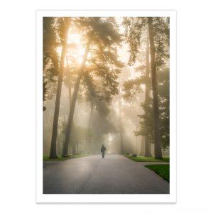 fotografija; printas; foto paveikslas; pirkti; fotografijos printas; arturas jendovickis; jendovickis; peizazas; landscape; vingio parkas; rukas parke; zmogus ruke; rukas; sauletekis